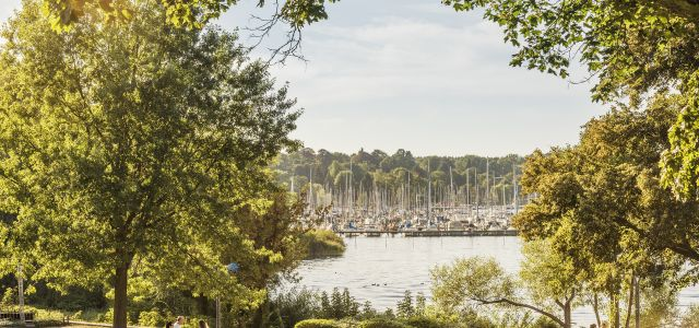 Services Berlin Convention Office Sustainable Meetings Berlin with sustainable service providers for your event - view of Wannsee lake at summer